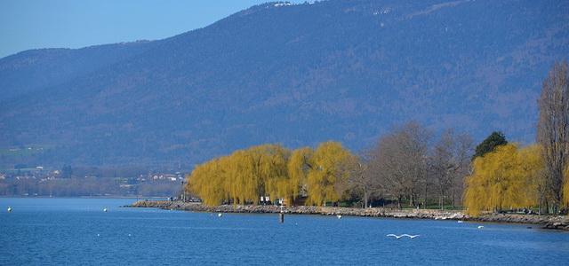 Lake-Neuchatel