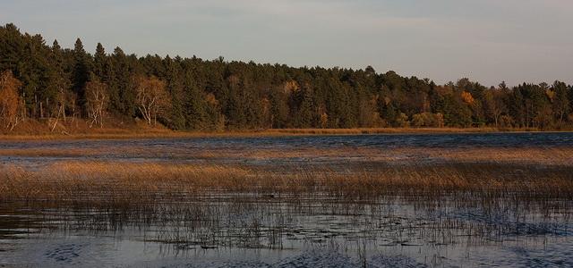 Lake_Itasca